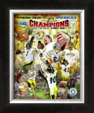 Pittsburgh Steelers Super Bowl XLIII Champions Framed Photographic Print