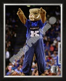 University of Kentucky Wildcats Mascot Framed Photographic Print