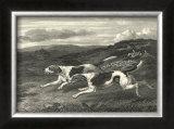 Foxhounds Prints by John Scott