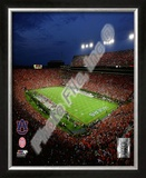 Jordan Hare Stadium Auburn Univeristy Tigers 2008 Framed Photographic Print