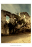 San Miguel IV Prints by Terry Lawrence