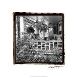 American Breeze IX Premium Giclee Print by Laura Denardo