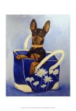 Min Pin To Go Print by Carol Dillon