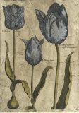 Embellished Elephant Tulips I Poster