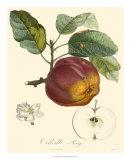 Manzanas Lámina giclée por  Bessa