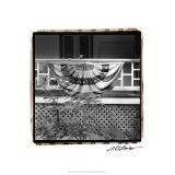 American Breeze VII Premium Giclee Print by Laura Denardo