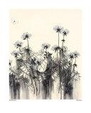 Flores brancas Pôster por Hans Andkjaer