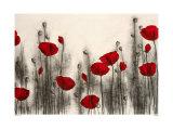 Rode rozen Print van Hans Andkjaer