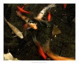 Goldfish Pond II Giclee Print by Alicia Ludwig