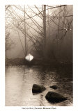 Silvered Morning Pond Poster von Heather Ross