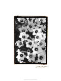 Springtime Garden II Premium Giclee Print by Laura Denardo