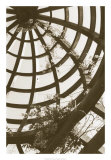Pergola Basket Giclee Print by Meg Mccomb