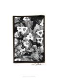 Springtime Garden I Premium Giclee Print by Laura Denardo