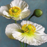 Poppy Parfait I Print by Janel Pahl