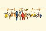 Coleção de pássaros II Pôsters por Wendy Russell