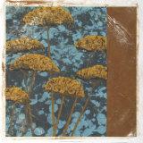 Golden Yarrow II Giclee Print by Chariklia Zarris