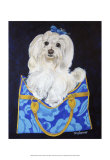 Maltese Clutch Prints by Carol Dillon