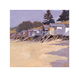 Beach Huts Against Fir Trees Print by John Sprakes