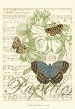 Papillon Melange I Prints