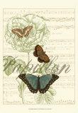 Papillon Melange II Poster