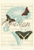 Papillon Melange IV Print
