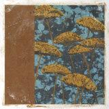 Golden Yarrow I Giclee Print by Chariklia Zarris