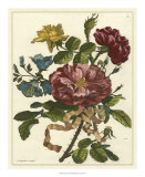 Floral Posy II Giclee Print by Giovanni Ferrari