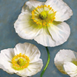 Poppy Parfait II Prints by Janel Pahl