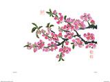 Flores rosas Póster por Ziang Xianwen