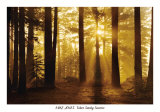 Tahoe Smoky Sunrise Print by Mike Jones
