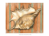 Shell on Stripes II Art by Laura Nathan