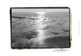 Ocean Sunrise IV Prints by Laura Denardo