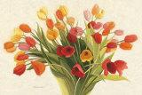 Tulipes printanières Affiches par Shirley Novak