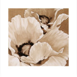 Sepia Summer I Prints by Maggie Thompson
