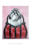 Shih-tzu Purse Art by Carol Dillon