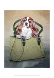 Cavalier and Carry Posters by Carol Dillon