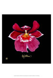 Vivid Orchid VIII Posters by Ginny Joyner