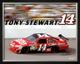 Tony Stewart 14 Prints