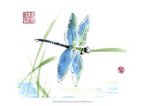 Dragonfly Print by Nan Rae