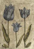 Embellished Elephant Tulips II Prints