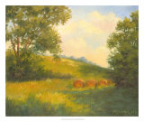 Golden Day Giclee Print by Mary Jean Weber