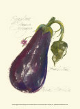 Eggplant Solanum Melongena Posters by Elissa Della-piana