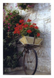 Flower Box Bike Giclee Print by Meg Mccomb