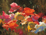 Poppies in Sunshine Poster by Leon Roulette
