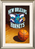 New Orleans Hornets Posters