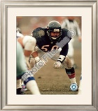 Mike Singletary Framed Photographic Print