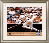 Don Mattingly - Batting Framed Photographic Print