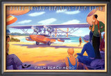 Palm Beach Aero Prints by Kerne Erickson