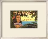 Hawaii, Aloha Poster