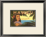 Hawaii, Aloha Prints